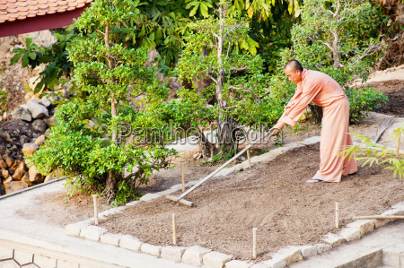 buddhist monk gardening at a temple