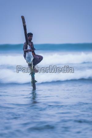 stilt fisherman at midigama near weligama