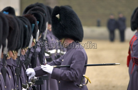 the household division irish guards on