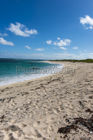 remote white sand beach in barbuda