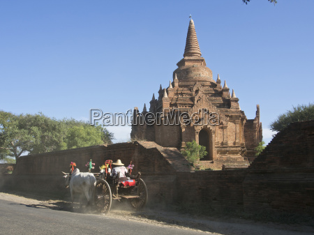 horse and cart by buddhist temples