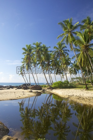 view of the unspoilt beach at