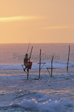 stilt fisherman at weligama south coast