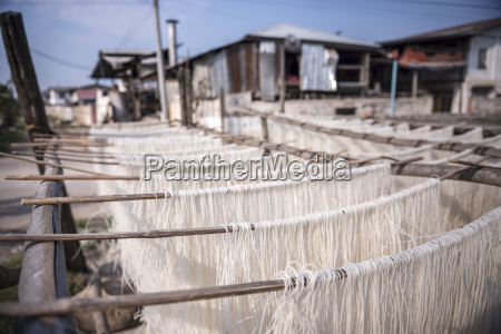 noodles drying at a noodle factory