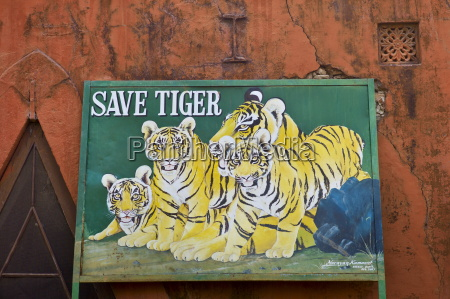 save tiger poster at ranthambhore national