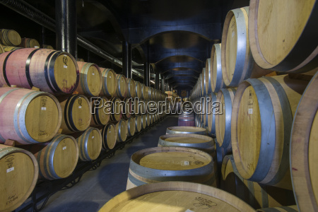 wine ageing in oak barrels in