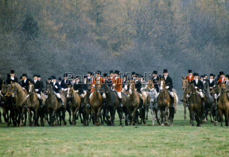the field of the cheshire hunt