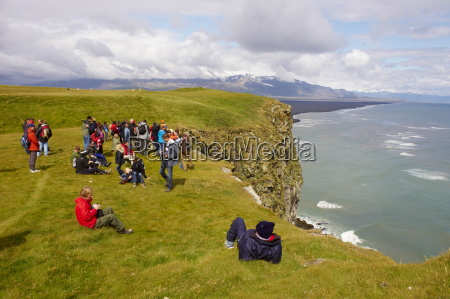 tourists looking the colonies of puffins