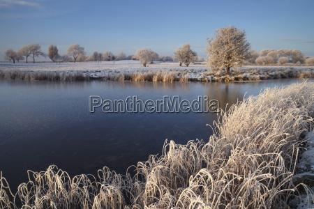 a beautiful hoar frost on a