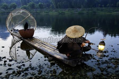 cormorant fisherman with his pet birds