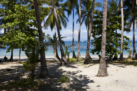 a remote palm covered island in