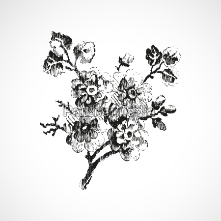 hand drawn twig with flowers vintage