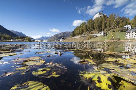 autumn leaves in lake tarasp frame