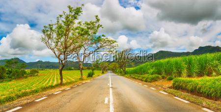 quite road among green hills landscape