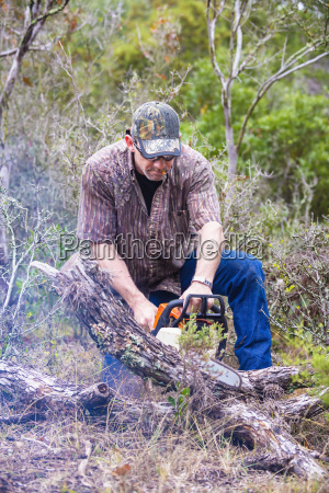 usa texas mature man sawing fallen