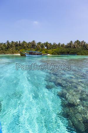 maledives south male atoll embudu boats
