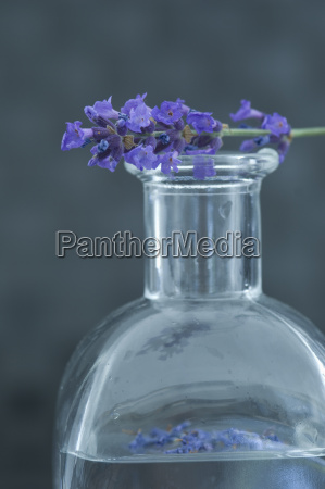 aromatic oil in a glass bottle
