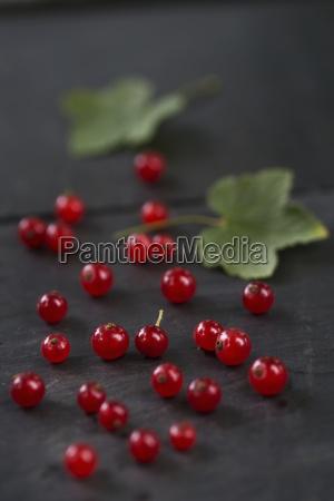 red currants on wood studio shot