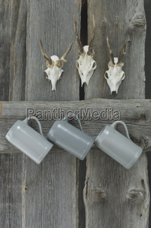 three antlers and three beer mugs