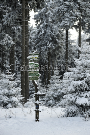 germany thurinigia oberhof signpost in forest