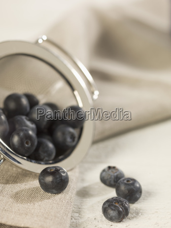 blueberries in sieve close up