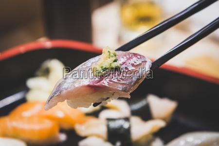 japan tokyo tsukiji fish market sushi