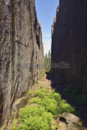 sweden oernskoeldsvik skuleskogen national park slattdalsskrevan