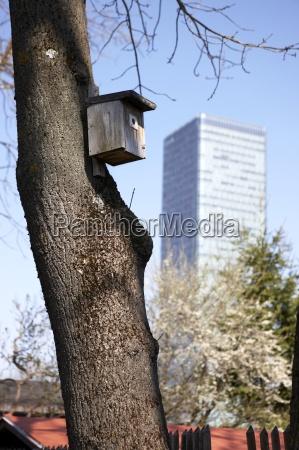 germany bavaria munich birdhouse on tree