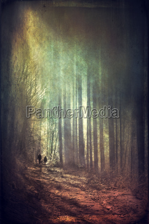 persons walking in forest at sunlight