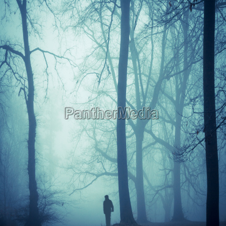 silhouette of a man in foggy