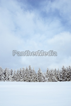 germany baden wuerttemberg constance district snow