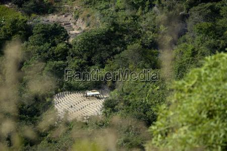 south america bolivia coroico illegal coca