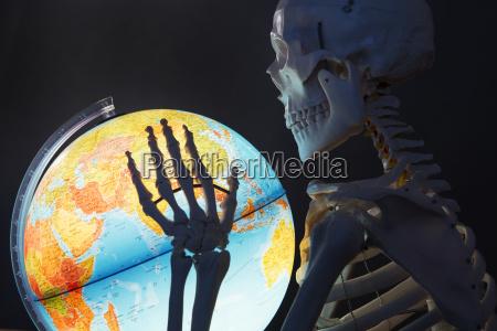 skeleton holding globe close up
