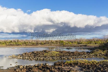 ecuador galapagos islands santa cruz view
