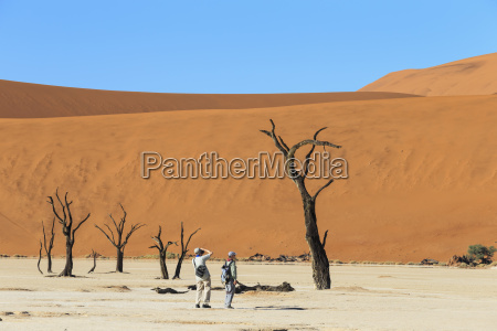 namibia namib naukluft namib desert tourists