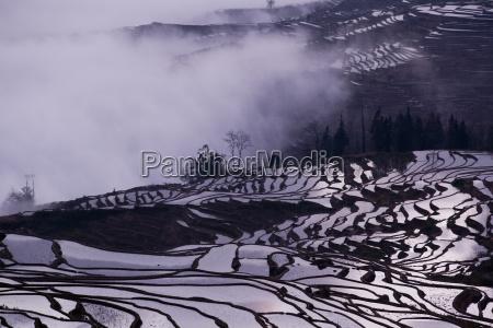 china yunnan yuanyang overcast rice terraces
