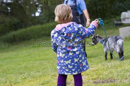 denmark girl holding goat with rope