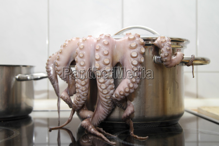 cooking octopus in vessel