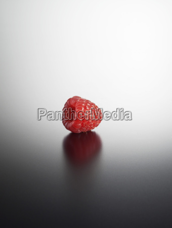 raspberry on coloured background close up