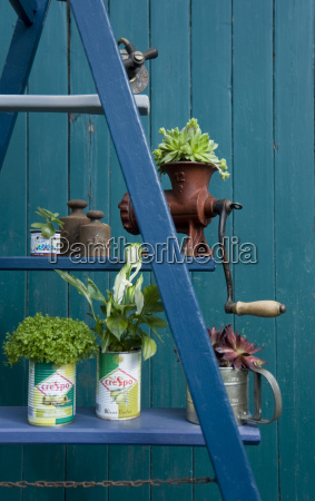 altes land flower arrangement ladder with