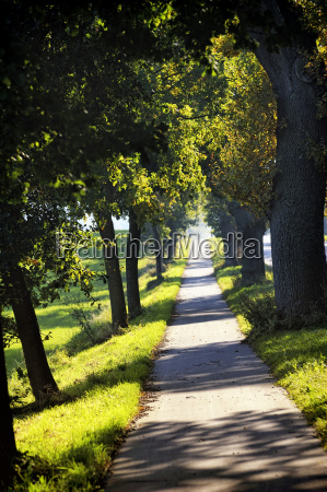 germany schleswig holstein klingberg path with