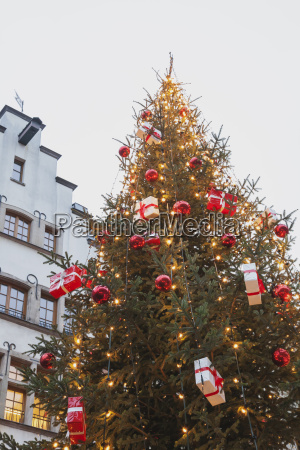 germany cologne decorated christmas tree in