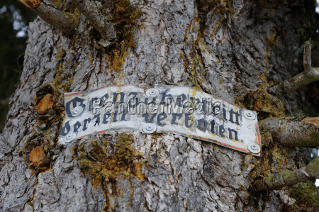 germany old sign on tree trunk