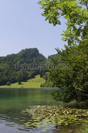 germany bavaria bad fauenbach lake alatsee