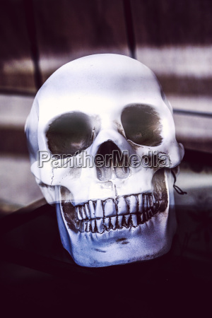 skull as halloween decoration