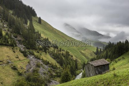 austria vorarlberg bregenz forest barn near