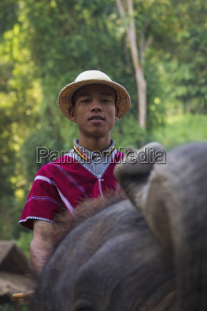 thailand chiang mai elephant show with
