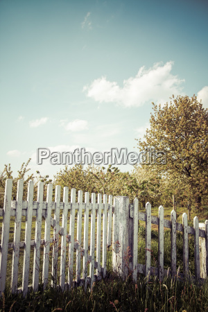 germany white wooden fence with trees