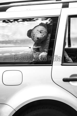 germany berlin teddy bear in car