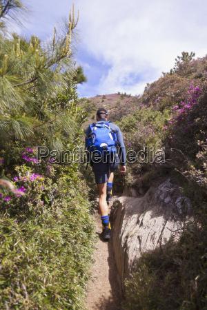 taiwan man hiking on trail to